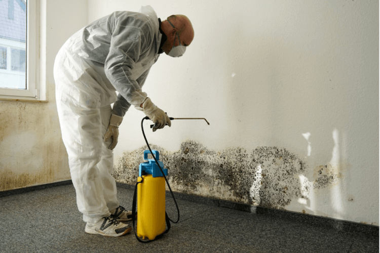 Preventing Your Basement from Water Leakage